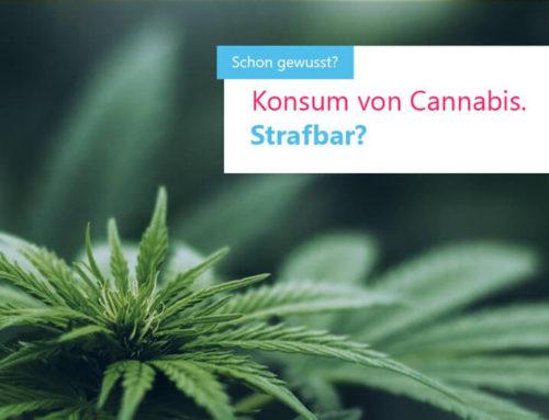 Cannabis – ist der Konsum strafbar?