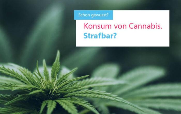 Cannabis - ist der Konsum strafbar?